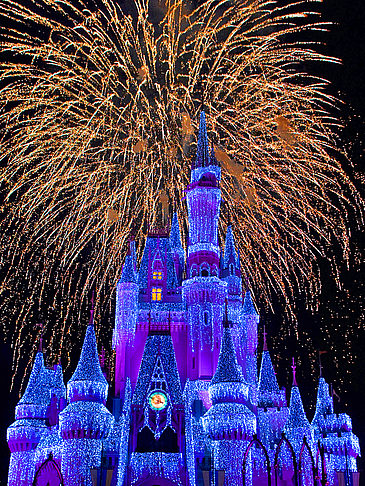 Walt Disney World Resort - Florida (Orlando)
