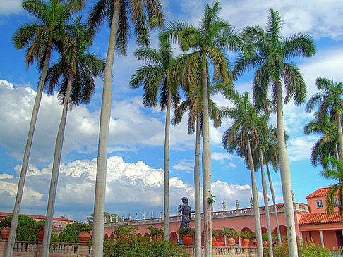 Ringling Museum of Art - Florida (Sarasota)