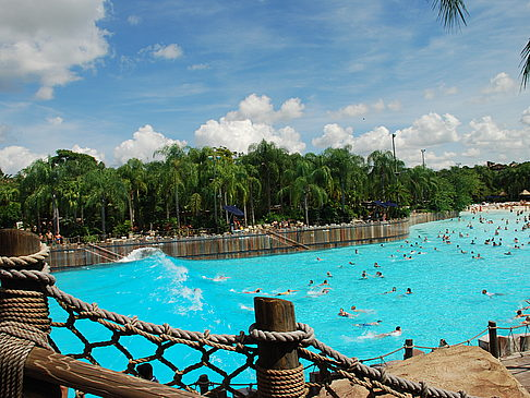 Fotos Disney's Typhoon Lagoon | Orlando
